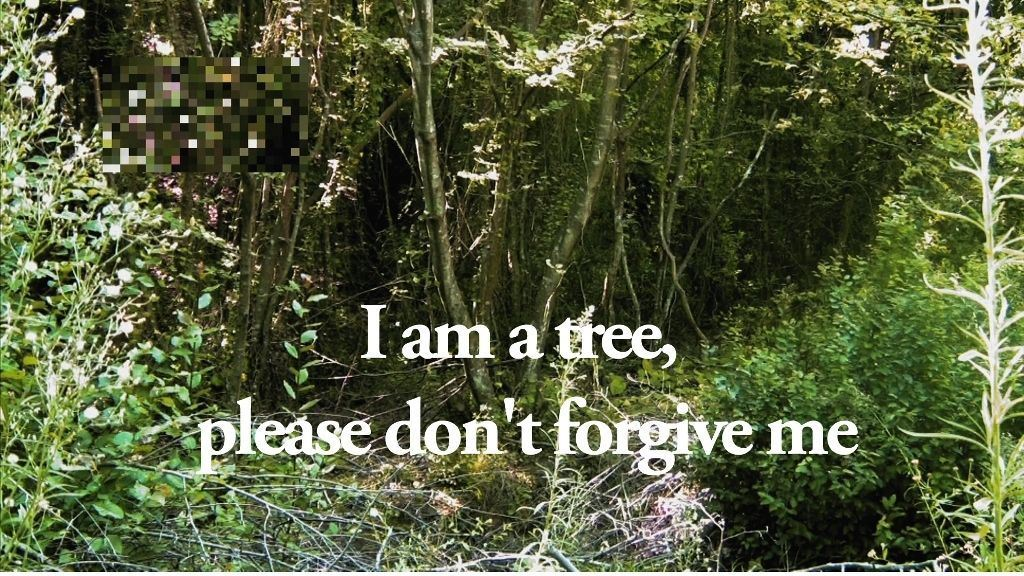 SELÇUK ARTUT, I am a tree, please don't forgive me...